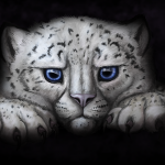 Snow leopard cub digital painting commission.