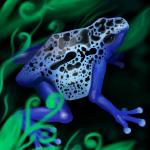 Blue dart frog planing digital drawing.